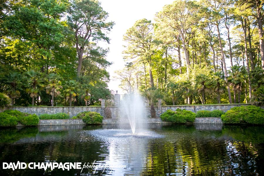 20140607-david-champagne-photography-virginia-beach-wedding-photographers-norfolk-botanical-gardens-wedding-photography-norfolk-botanical-gardens-wedding-photographers-_0009
