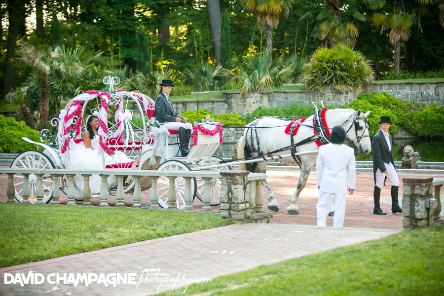 20140607-david-champagne-photography-virginia-beach-wedding-photographers-norfolk-botanical-gardens-wedding-photography-norfolk-botanical-gardens-wedding-photographers-_0028