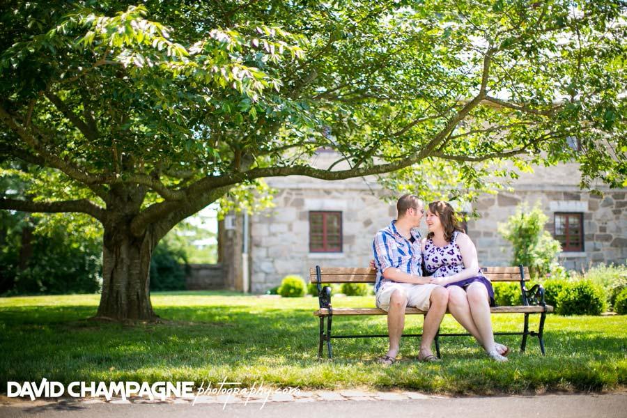 20140621-david-champagne-photography-richmond-wedding-photographers-maymont-park-engagement-photography-_0004
