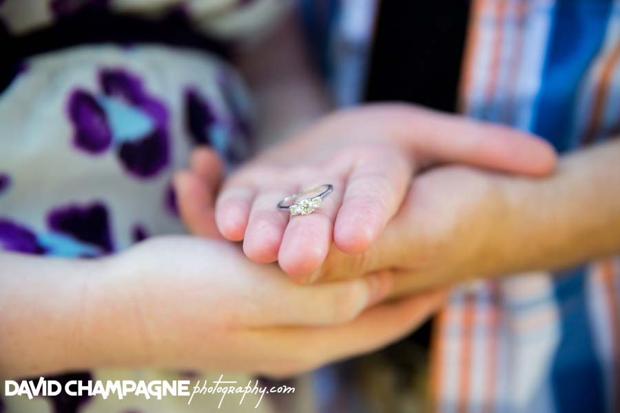 20140621-david-champagne-photography-richmond-wedding-photographers-maymont-park-engagement-photography-_0018