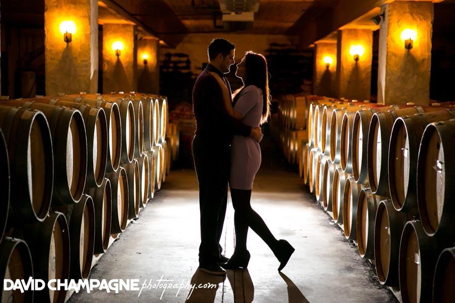 20141108-virginia-beach-wedding-photographers-david-champagne-photography-williamsburg-winery-engagement-photos-0001