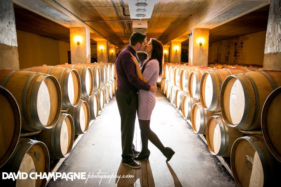 20141108-virginia-beach-wedding-photographers-david-champagne-photography-williamsburg-winery-engagement-photos-0002