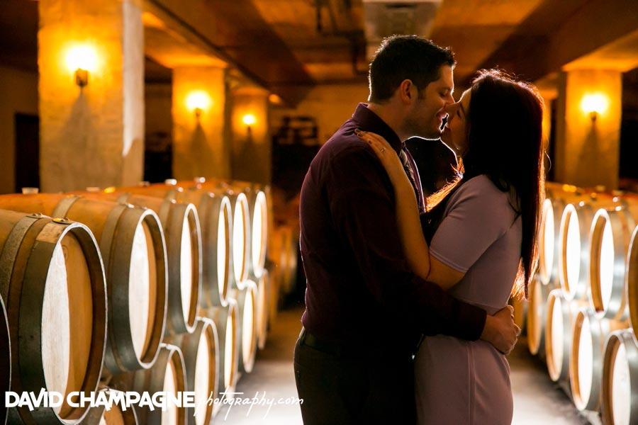 20141108-virginia-beach-wedding-photographers-david-champagne-photography-williamsburg-winery-engagement-photos-0004