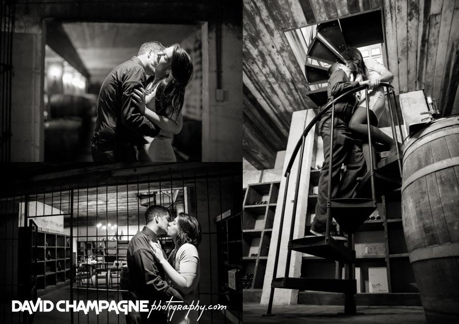 20141108-virginia-beach-wedding-photographers-david-champagne-photography-williamsburg-winery-engagement-photos-0005