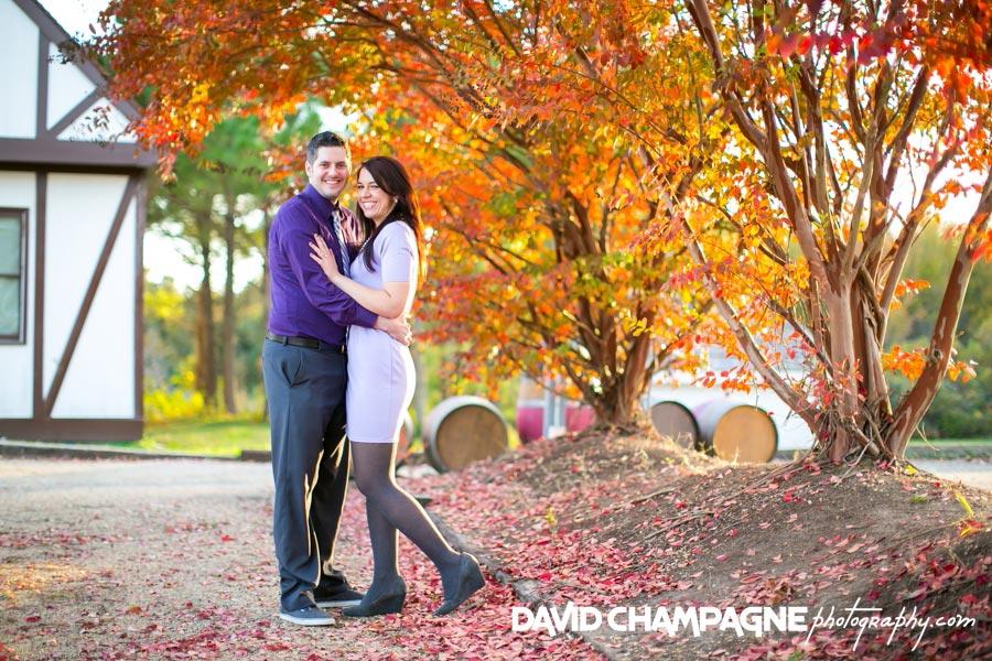 20141108-virginia-beach-wedding-photographers-david-champagne-photography-williamsburg-winery-engagement-photos-0008