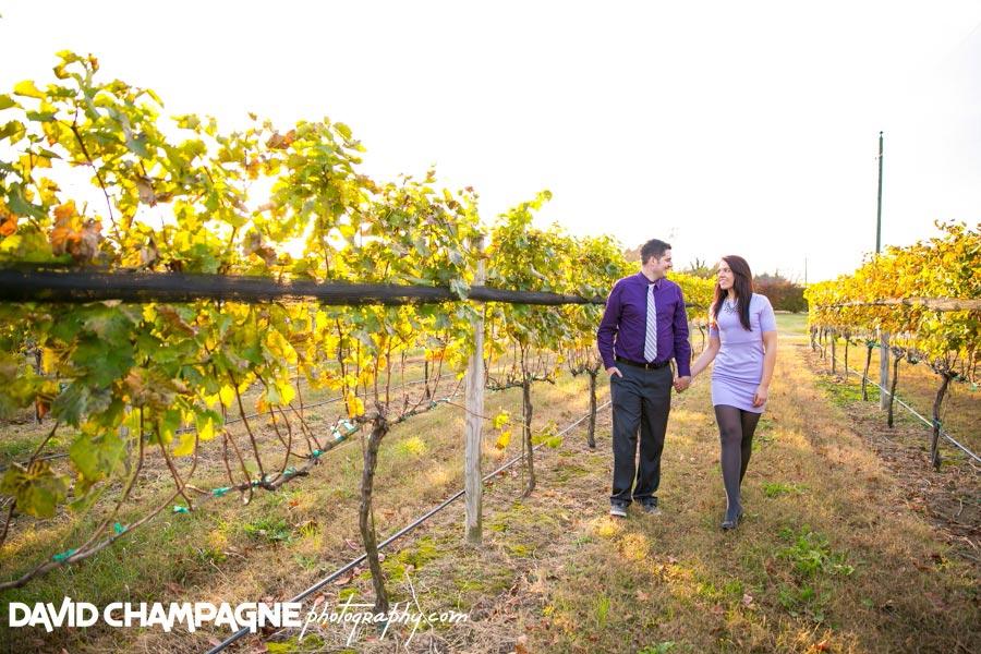 20141108-virginia-beach-wedding-photographers-david-champagne-photography-williamsburg-winery-engagement-photos-0011