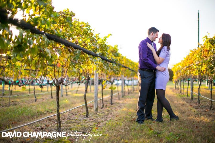 20141108-virginia-beach-wedding-photographers-david-champagne-photography-williamsburg-winery-engagement-photos-0012