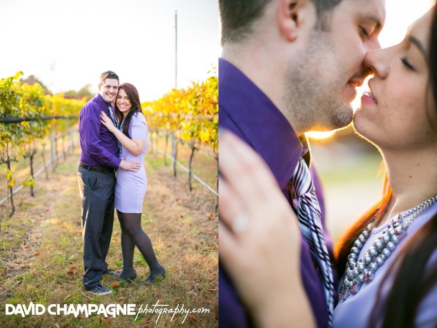 20141108-virginia-beach-wedding-photographers-david-champagne-photography-williamsburg-winery-engagement-photos-0013