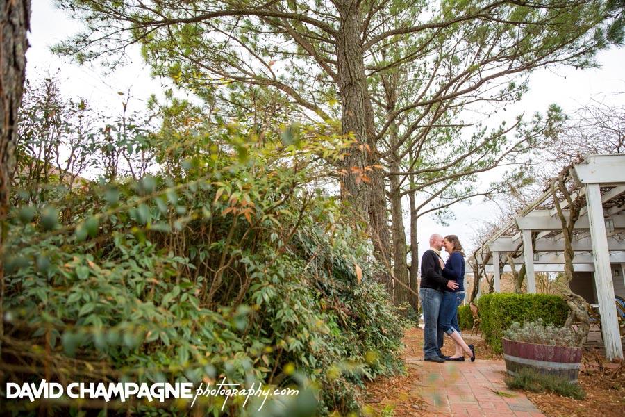 20150328-williamsburg-engagement-photographers-williamsburg-winery-engagement-david-champagne-photography-0015