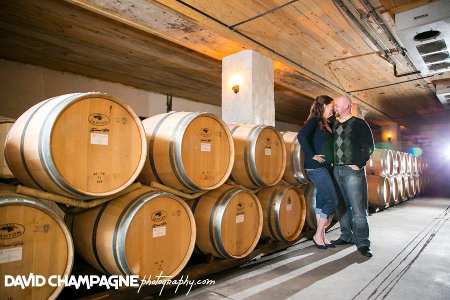 20150328-williamsburg-engagement-photographers-williamsburg-winery-engagement-david-champagne-photography-0019