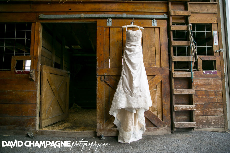20150717-hermitage-hill-farm-and-stables-wedding-photography-virginia-beach-wedding-photographers-david-champagne-photography-0003