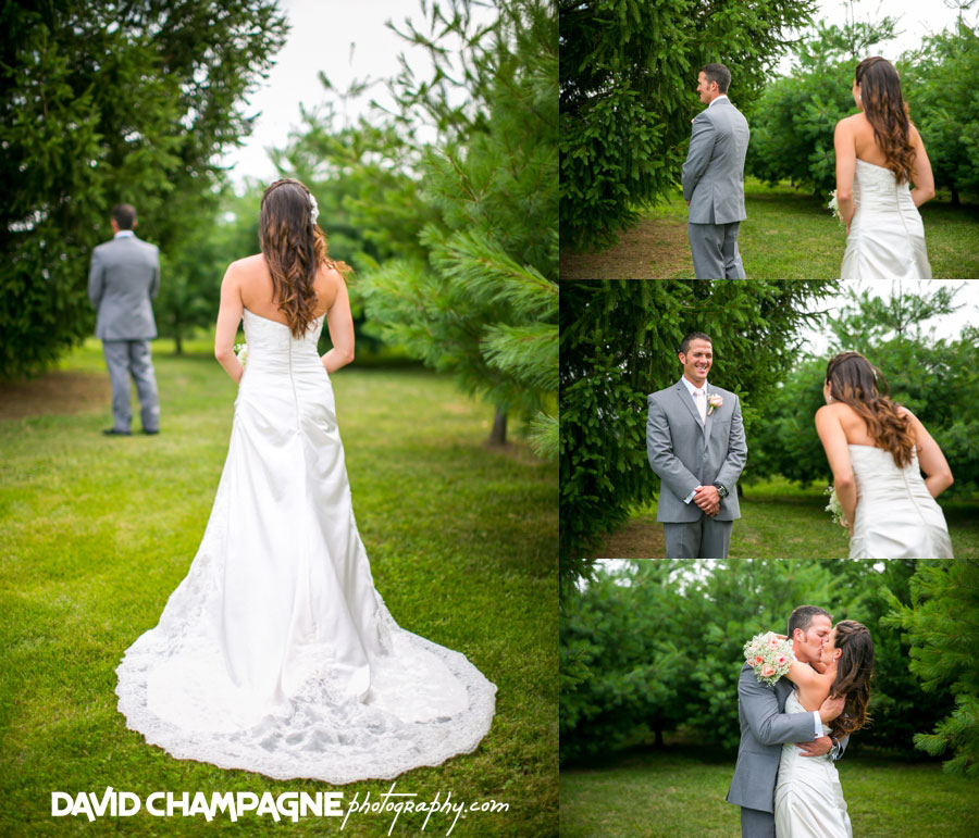 20150717-hermitage-hill-farm-and-stables-wedding-photography-virginia-beach-wedding-photographers-david-champagne-photography-0024