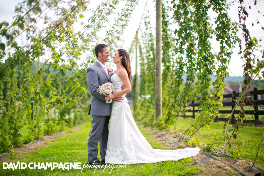 20150717-hermitage-hill-farm-and-stables-wedding-photography-virginia-beach-wedding-photographers-david-champagne-photography-0054