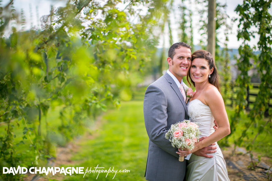 20150717-hermitage-hill-farm-and-stables-wedding-photography-virginia-beach-wedding-photographers-david-champagne-photography-0055