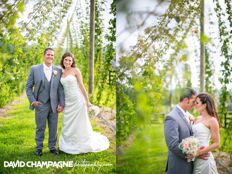 20150717-hermitage-hill-farm-and-stables-wedding-photography-virginia-beach-wedding-photographers-david-champagne-photography-0056