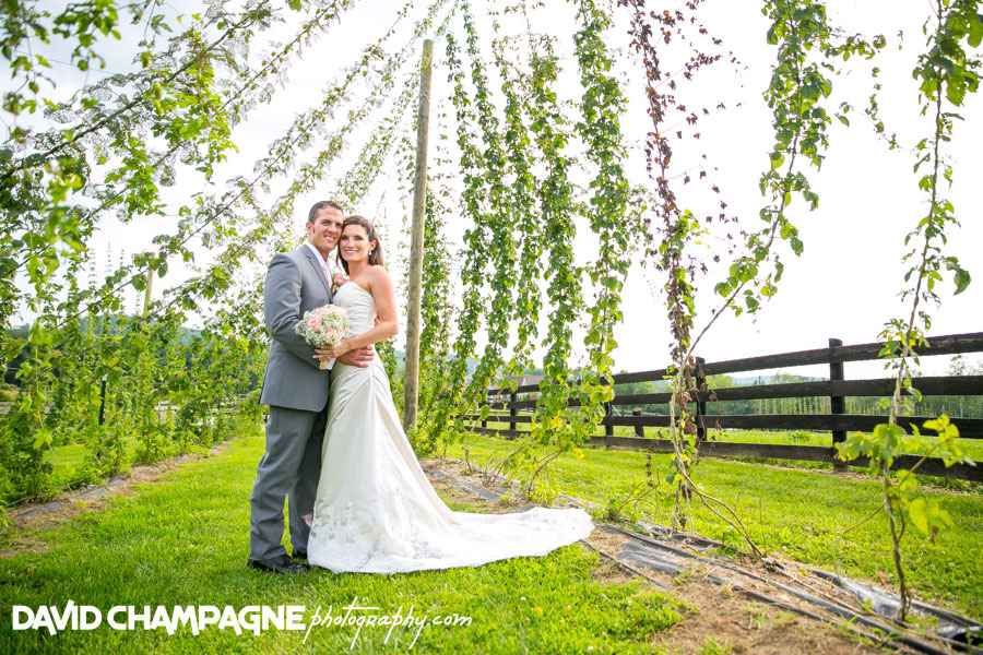 20150717-hermitage-hill-farm-and-stables-wedding-photography-virginia-beach-wedding-photographers-david-champagne-photography-0057