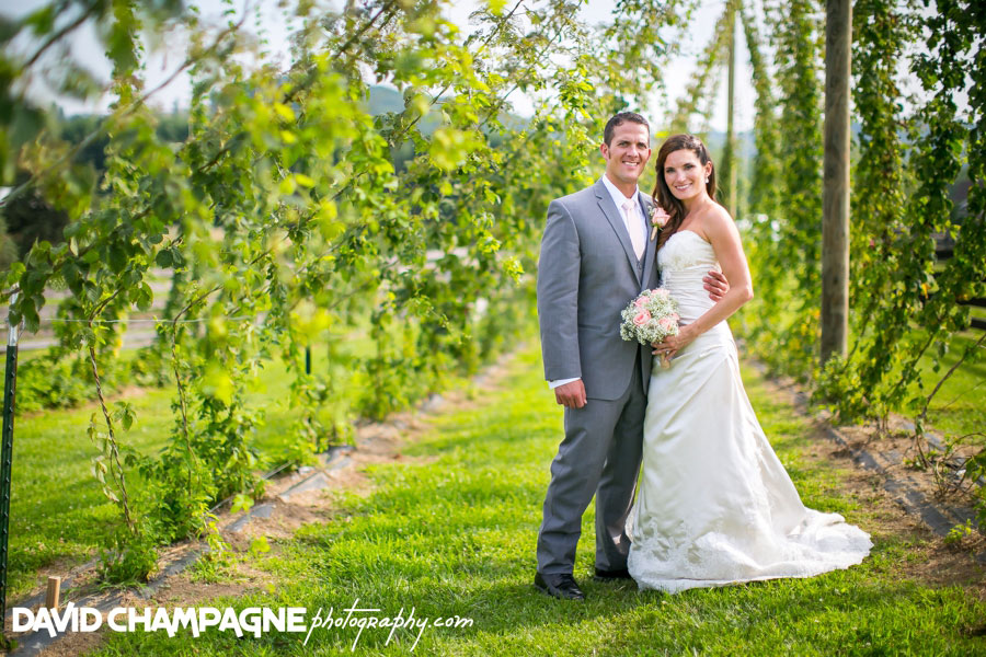 20150717-hermitage-hill-farm-and-stables-wedding-photography-virginia-beach-wedding-photographers-david-champagne-photography-0058