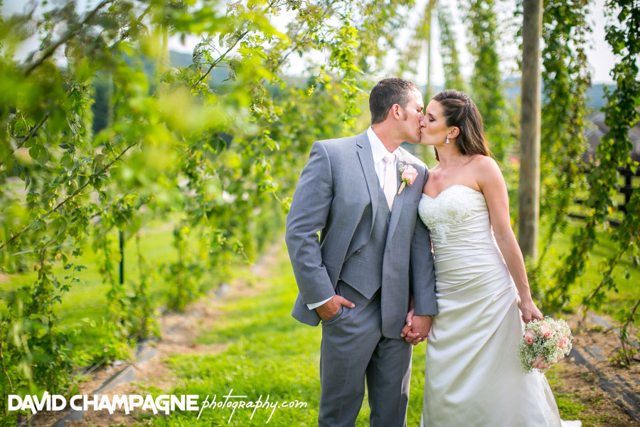 20150717-hermitage-hill-farm-and-stables-wedding-photography-virginia-beach-wedding-photographers-david-champagne-photography-0059