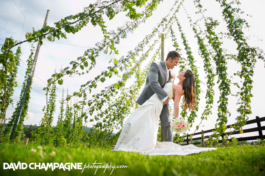 20150717-hermitage-hill-farm-and-stables-wedding-photography-virginia-beach-wedding-photographers-david-champagne-photography-0060