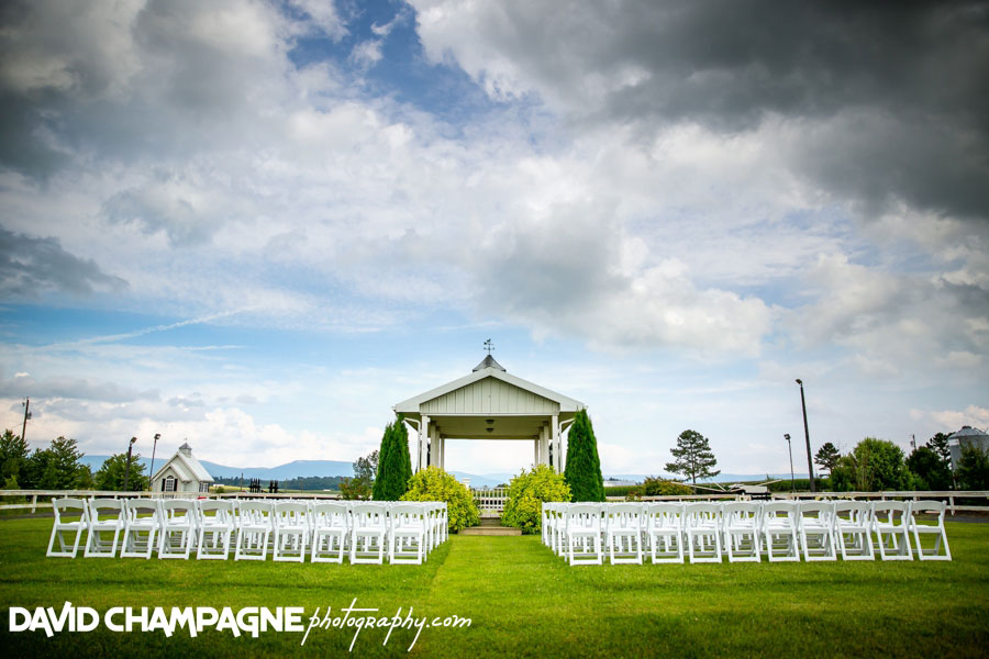 20150717-hermitage-hill-farm-and-stables-wedding-photography-virginia-beach-wedding-photographers-david-champagne-photography-0061