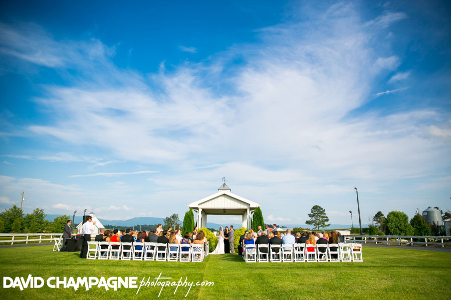 20150717-hermitage-hill-farm-and-stables-wedding-photography-virginia-beach-wedding-photographers-david-champagne-photography-0063