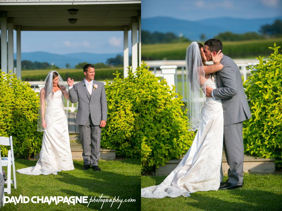 20150717-hermitage-hill-farm-and-stables-wedding-photography-virginia-beach-wedding-photographers-david-champagne-photography-0067