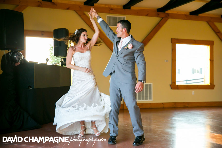 20150717-hermitage-hill-farm-and-stables-wedding-photography-virginia-beach-wedding-photographers-david-champagne-photography-0080