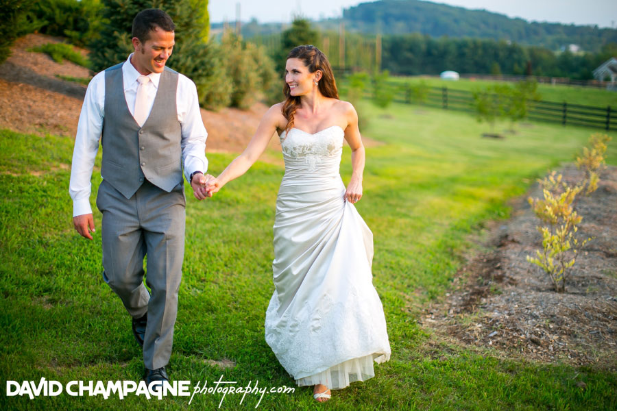 20150717-hermitage-hill-farm-and-stables-wedding-photography-virginia-beach-wedding-photographers-david-champagne-photography-0083