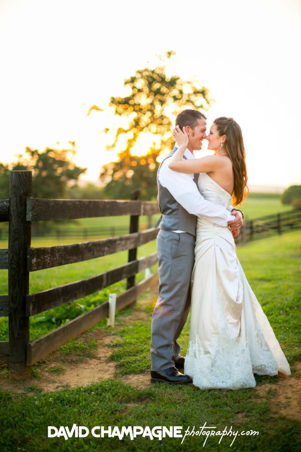 20150717-hermitage-hill-farm-and-stables-wedding-photography-virginia-beach-wedding-photographers-david-champagne-photography-0086