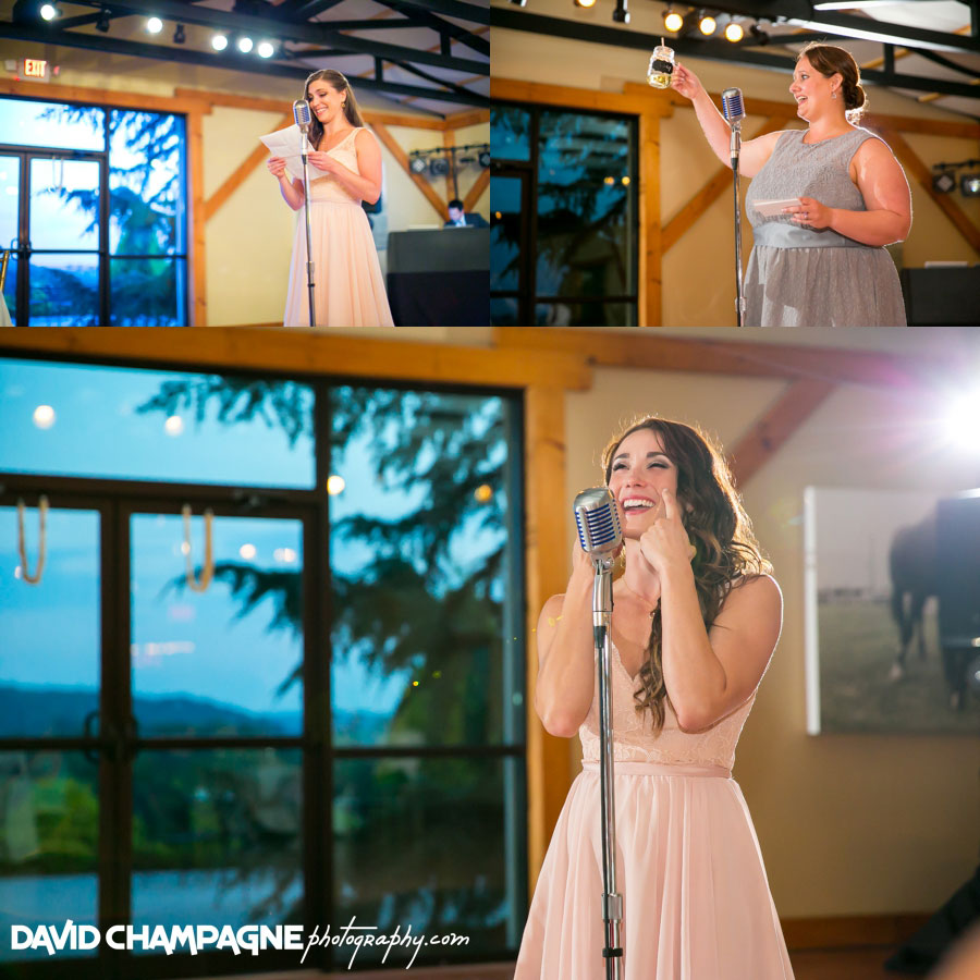 20150717-hermitage-hill-farm-and-stables-wedding-photography-virginia-beach-wedding-photographers-david-champagne-photography-0090