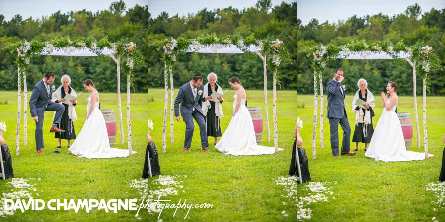 20150830-williamsburg-winery-wedding-photos-virginia-beach-wedding-photographers-david-champagne-photography-0056