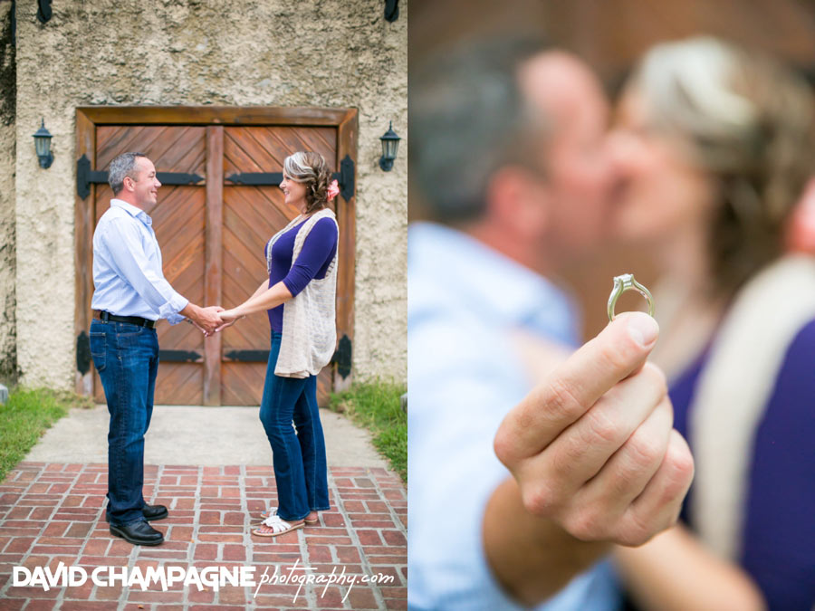 20150920-williamsburg-winery-engagement-photos-williamsburg-engagement-photographers-david-champagne-photography-0022