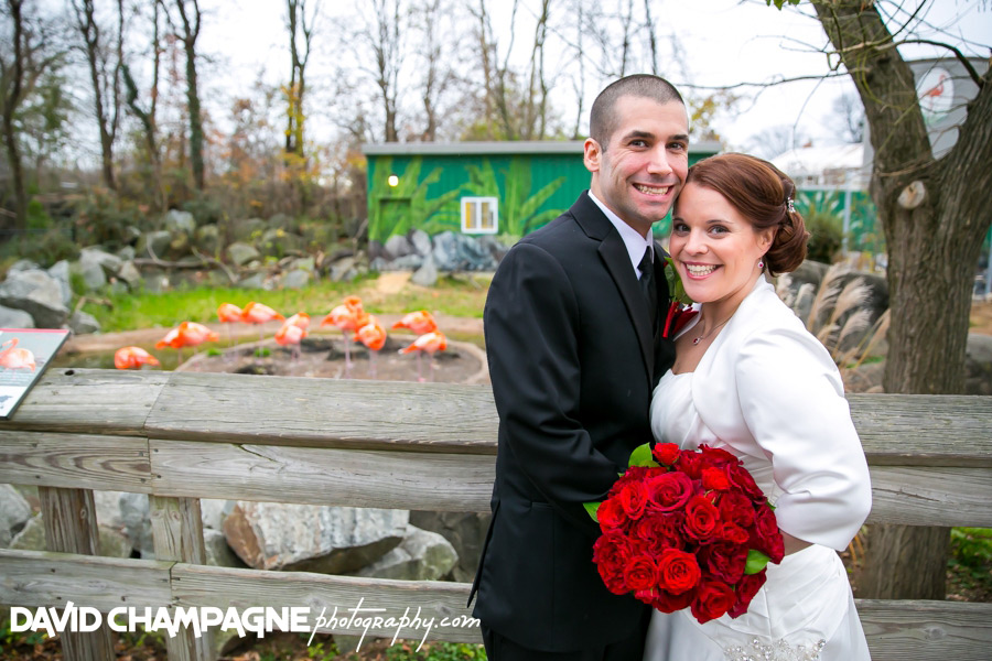 20151128-mansion-house-maryland-zoo-wedding-photography-baltimore-wedding-photographers-0029