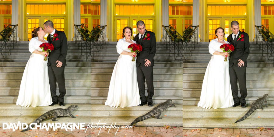 20151128-mansion-house-maryland-zoo-wedding-photography-baltimore-wedding-photographers-0070