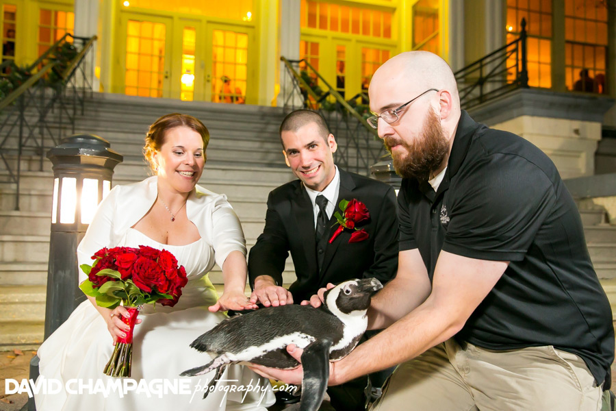 20151128-mansion-house-maryland-zoo-wedding-photography-baltimore-wedding-photographers-0075