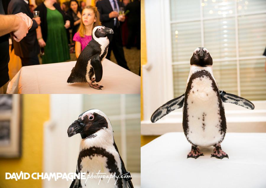 20151128-mansion-house-maryland-zoo-wedding-photography-baltimore-wedding-photographers-0082