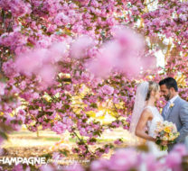 Norfolk Botanical Gardens wedding photos