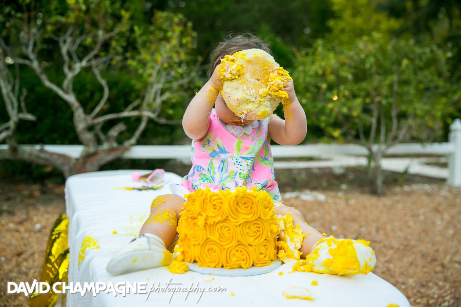 Virginia Beach cake smash photos